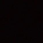 birke-schwarz