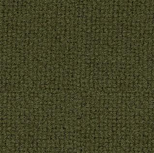 tonus-moss-green