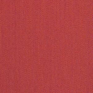 Steelcut-Trio-C0553
